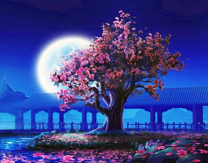 Cherry Blossom Tree By Moonlight Paint By Numbers