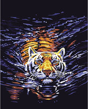 Tiger creeping in water