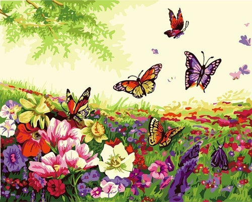 Butterflies amongst a field of flowers