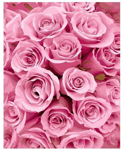 Only Pink Roses