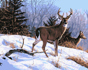 Deers in snow - DIY Paint By Numbers Kits for Adults
