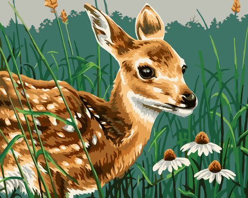 Baby deer with daisies - DIY Paint By Numbers Kits for Adults