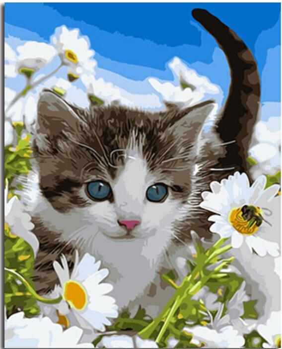 Kitten amongst daisies