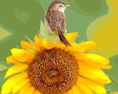 Bird on large sunflower