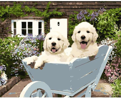 Happy Puppies in Wheel Barrow