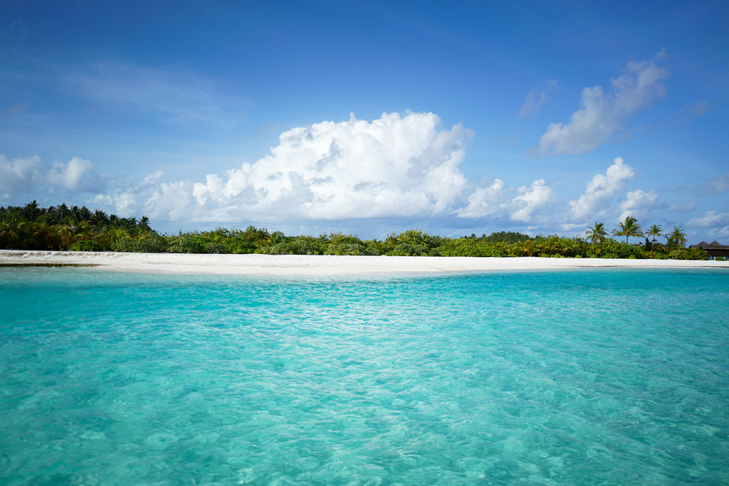 Maldives: Surfing the Indian Ocean