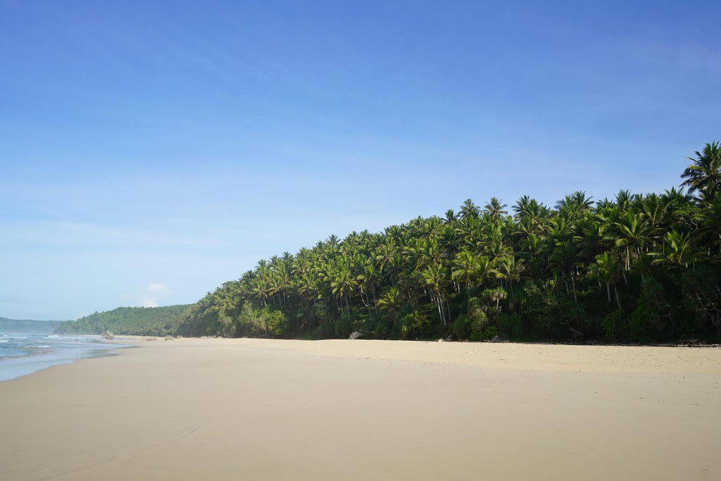 Nihi Sumba: The Edge of Wildness