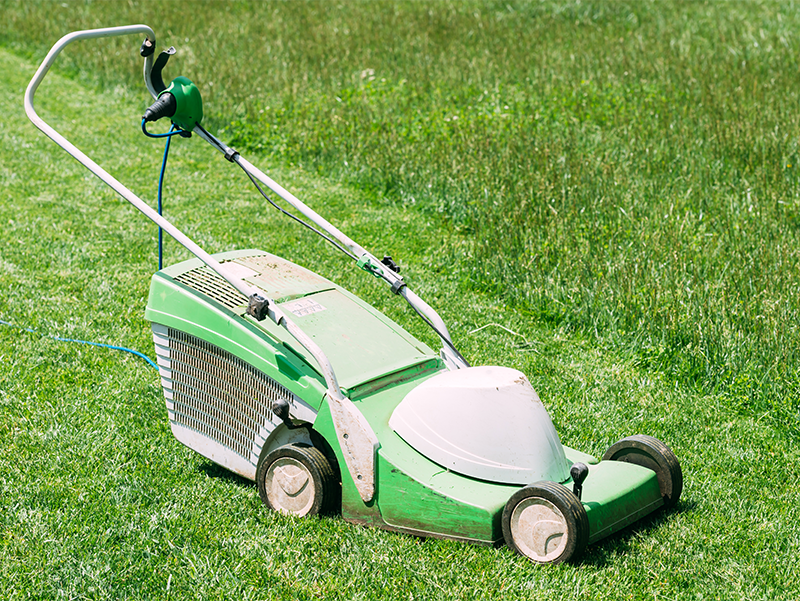 January Garden Job - Service Your Lawn Mower