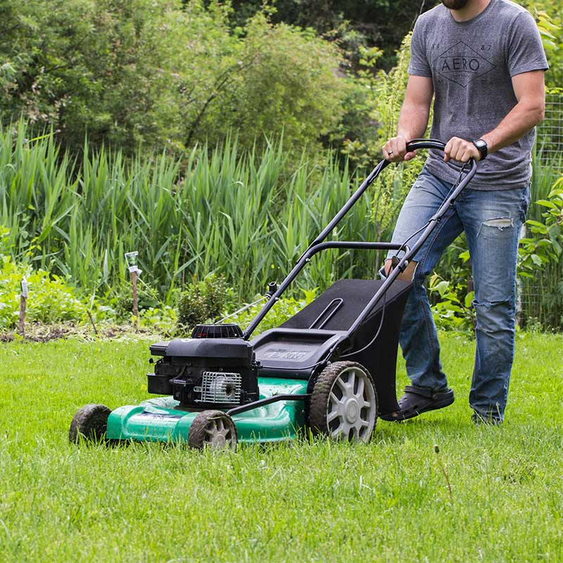 June Gardening Jobs - Mow the Lawn