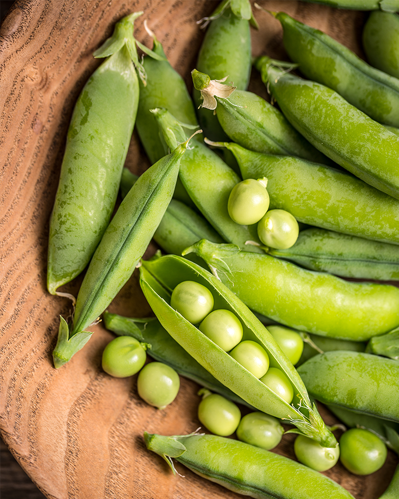 What to Do in the Garden in March - Plant Peas