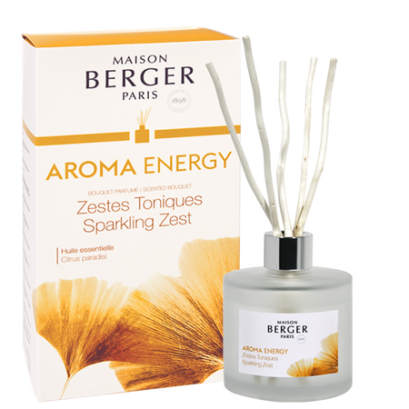 Maison Berger AROMA Energy - Sparkling Zest Scented Bouquet 6057