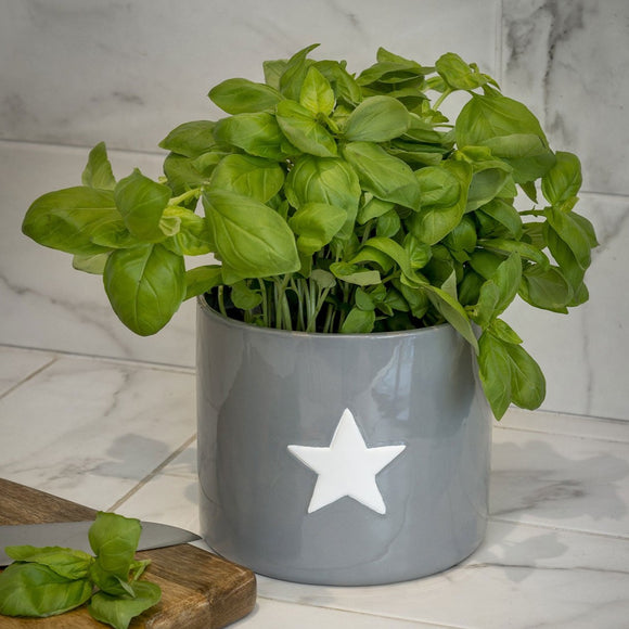 Retreat Ceramic Flower Pot/Planter - Grey with White Star
