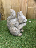 Garden Concrete Animals - Squirrel family