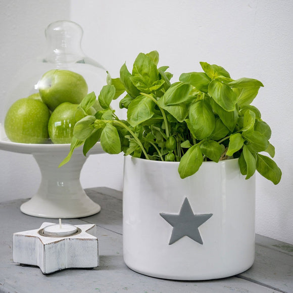 Retreat Ceramic Flower Pot/Planter - White with Grey Star