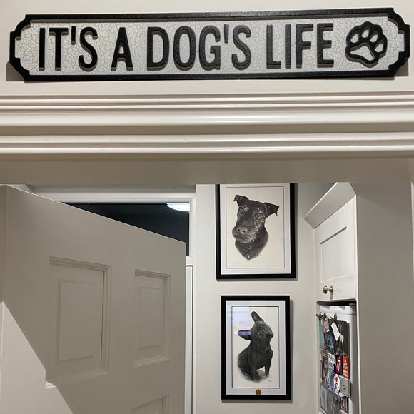 'It's a Dog's Life' Small Vintage Street Sign