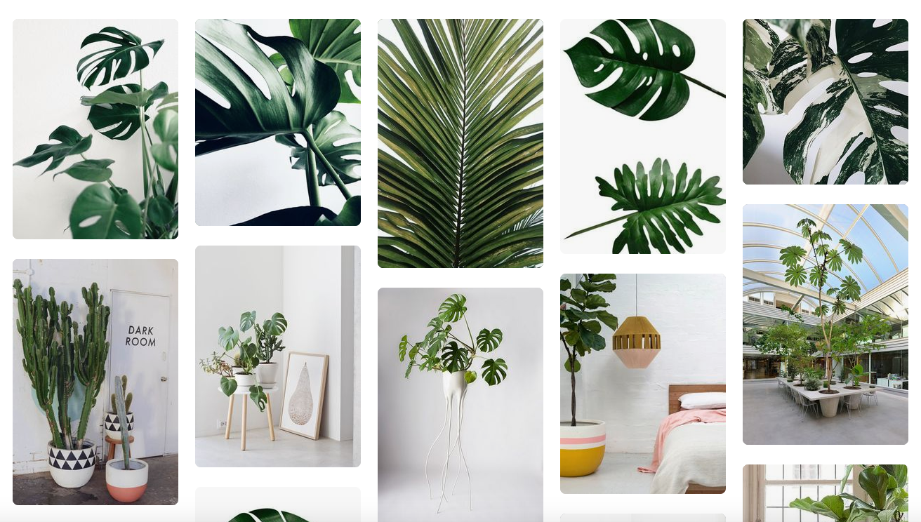 Hidden Secrets Decorating with Beautiful Fake Plants