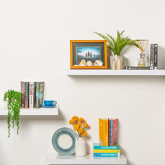 styling your shelves with plants