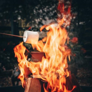 cooking s'mores over a fire pit