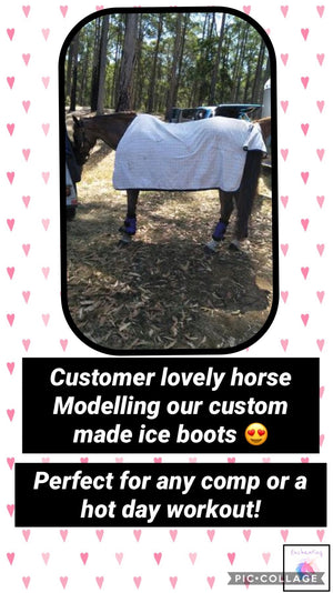 horse ice boots