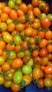Tomatoes - Orange Cherry