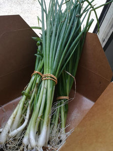 Onions - Spring Onions (100g)