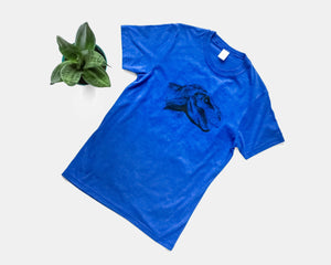 Heather Blue Bamboo tri-blend tee with dinosaur (T-Rex) design