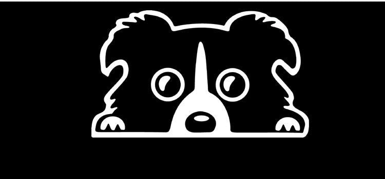 Funny Border Collie Dog  Stickers