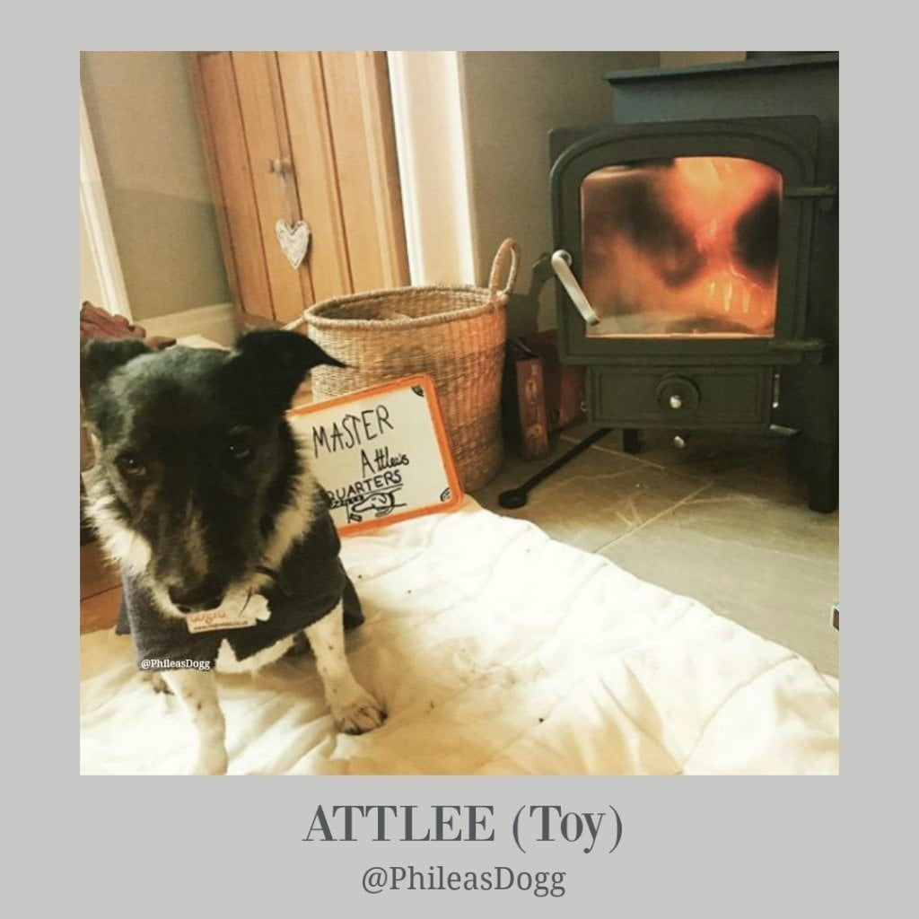 Attlee from Phileas Dogg Blog - Dogrobes UK