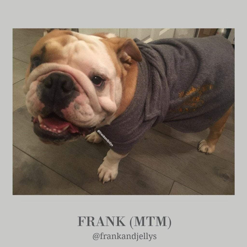 Frank the Bulldog from Frank and Jelly's - Dogrobes UK