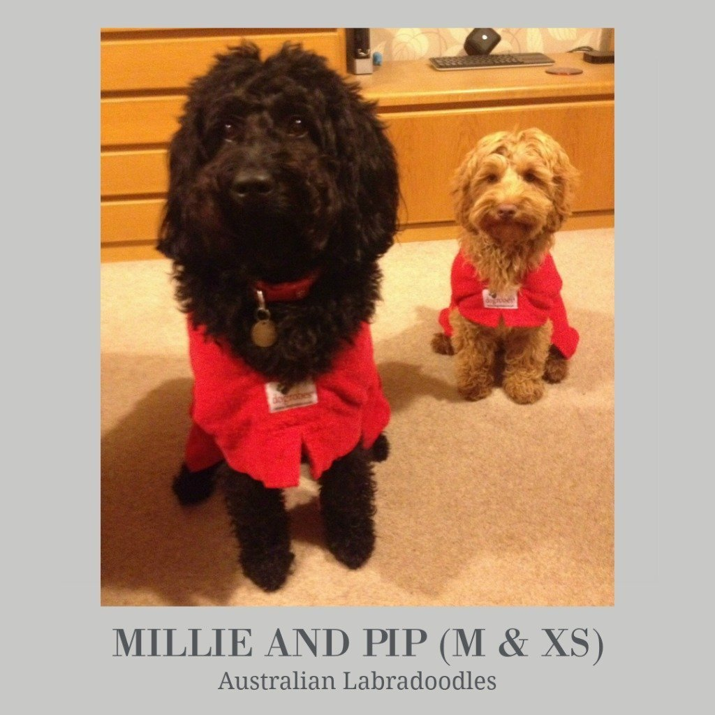 Millie and Pip