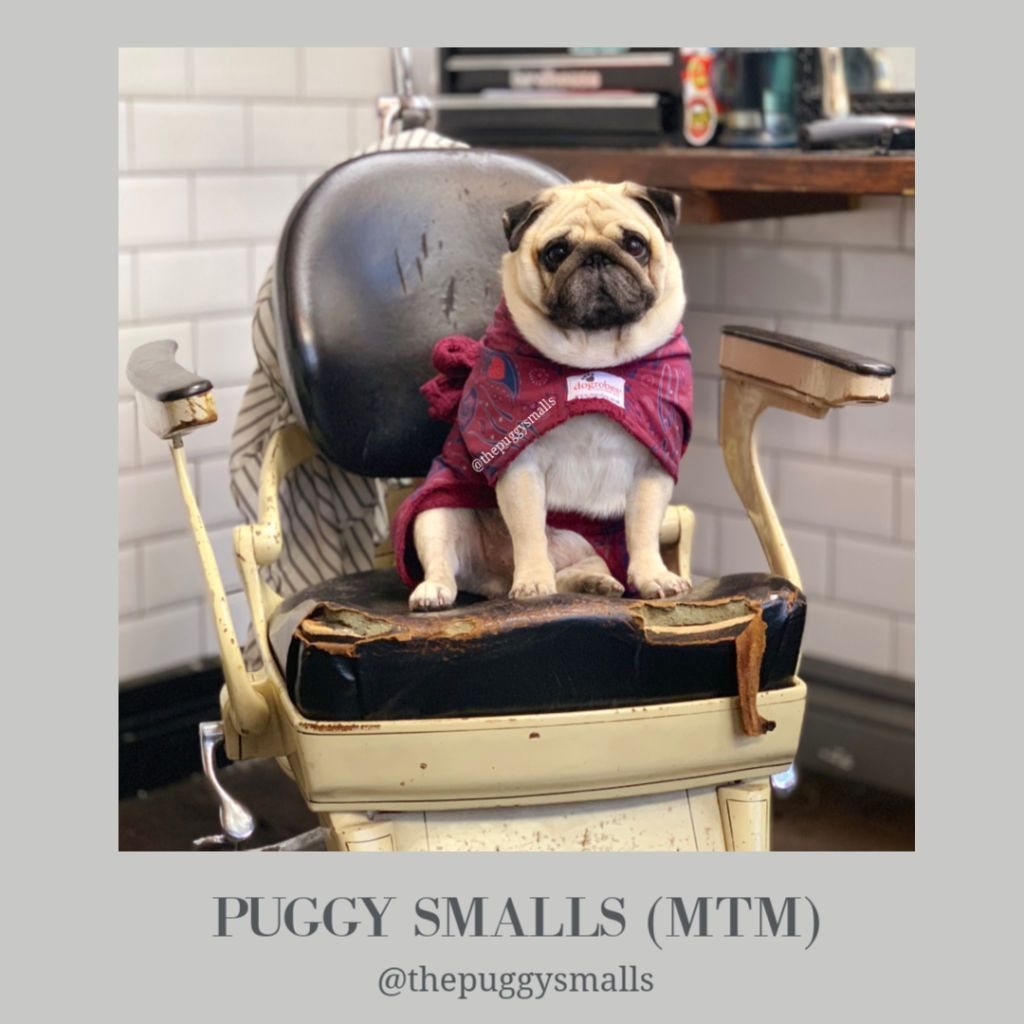 Puggy Smalls - Dogrobes UK