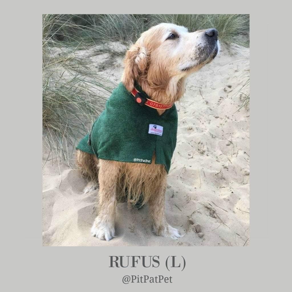 Rufus the Golden Retriever from PitPat - Dogrobes UK