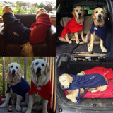 Golden Retrievers Wearing Red and Navy Dogrobes