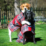 Pups On Par Labrador and Rescue Wearing Tartan Dogrobes