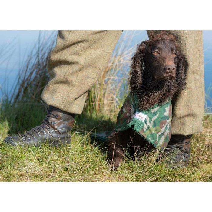 Cocker Spaniel Wearing Camouflage Dogrobe
