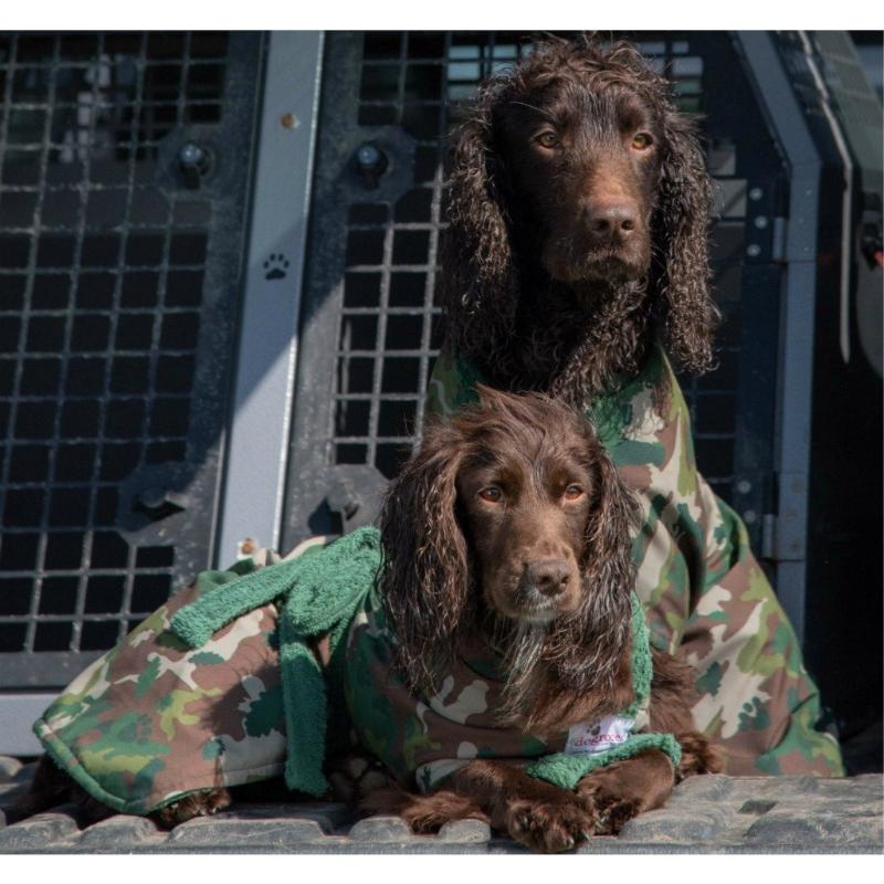 Two Wet Cocker Spaniels Wearing Camouflage Dogrobes