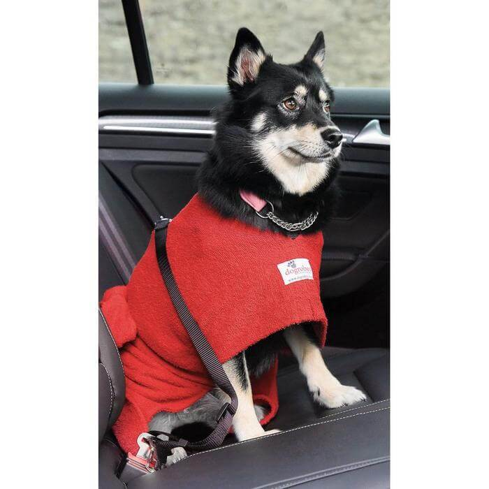 Pomsky Wearing Red Dogrobe With Harness Access Opening In Car