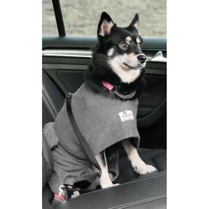 Pomsky Wearing Grey Dogrobe With Harness Access Opening In Car