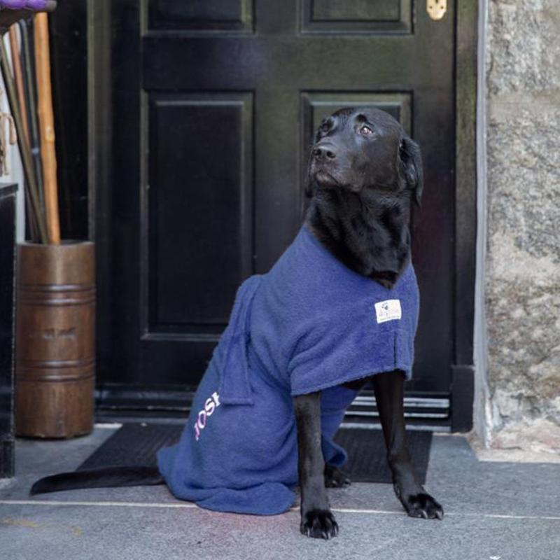 Black Labrador Wearing Navy Personalised Dogrobe