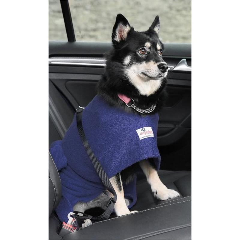 Pomsky Wearing Navy Dogrobe With Harness Access Opening In Car