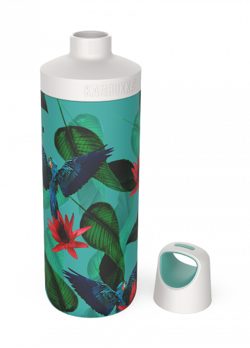 Botella Reno Insulated 500ml - Parrots