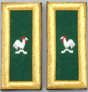 D7056 Shoulder Boards Captain General (PAIR) MYLAR