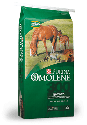 Purina® Omolene #300® Growth Horse Feed