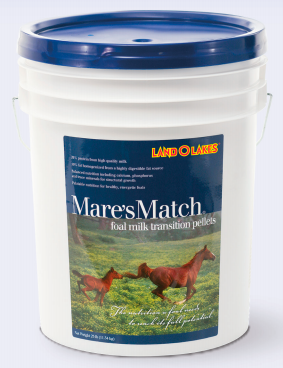 LAND O LAKES® Mare's Match® Foal Milk Transition Pellets