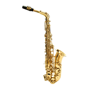 SAXOFON ALTO AS651 CONN