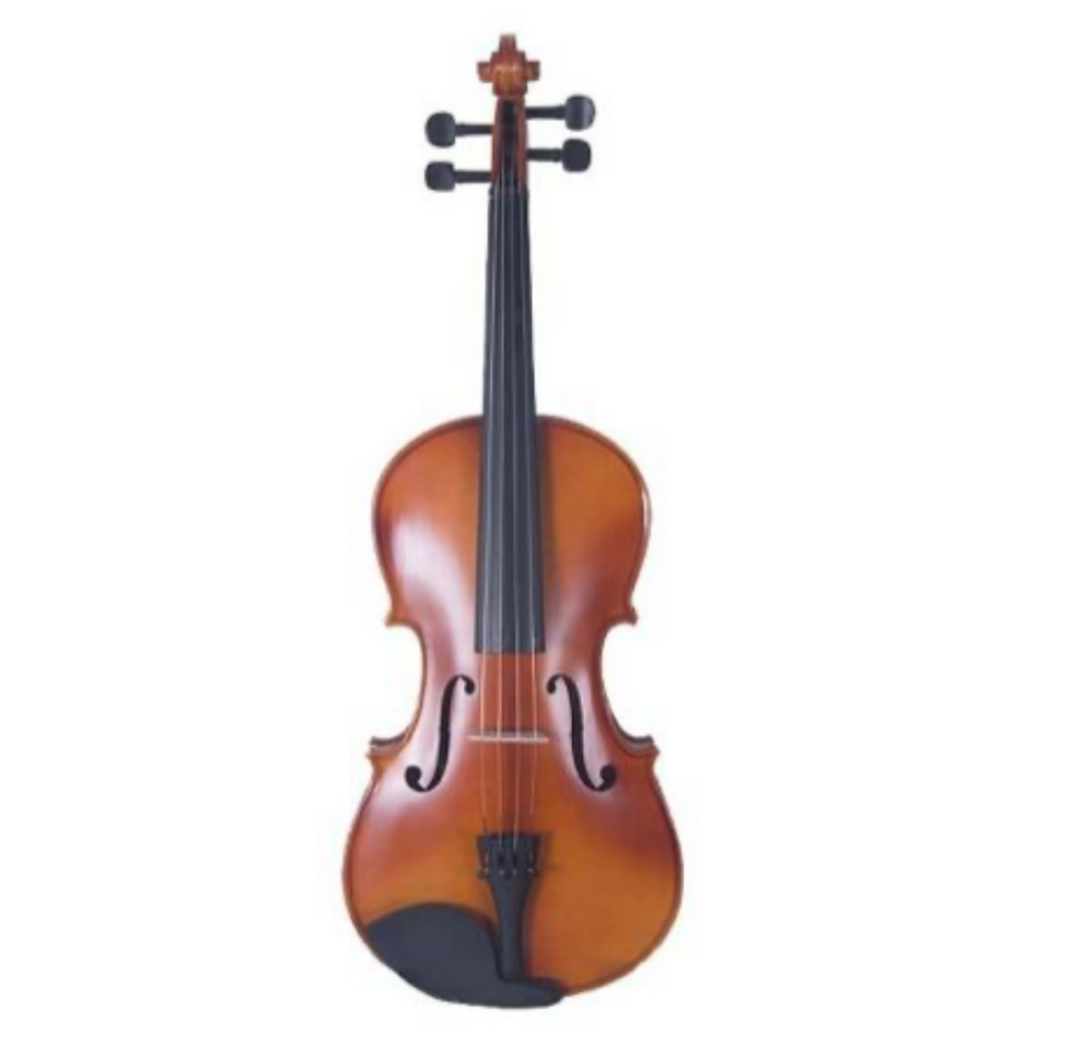VIOLA 15 HXZQ02E SOLIDO FEW FLAMED VERONA