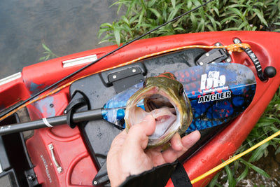 How to Fish Big Bass in the Spring [Video]