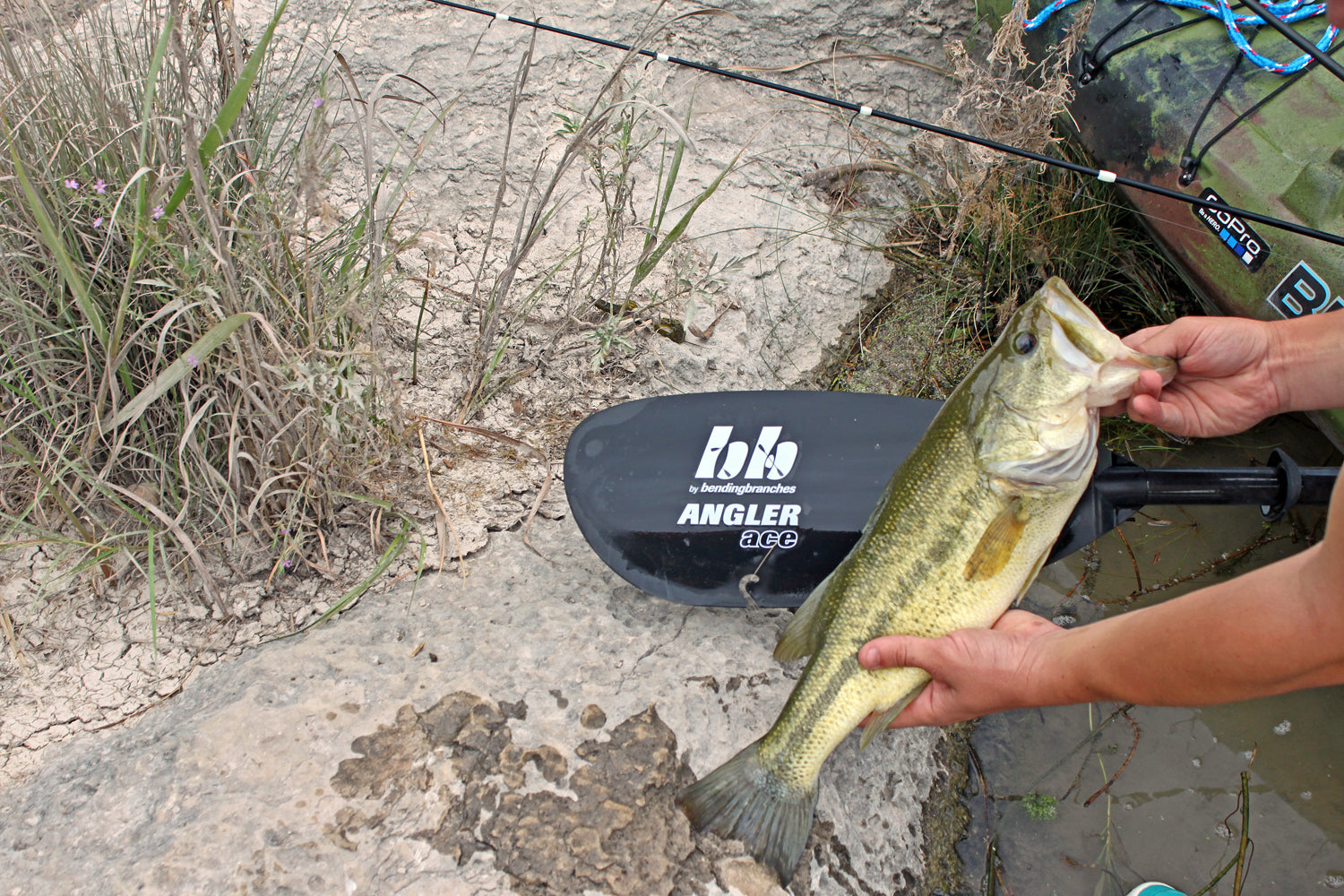 21 Inch Bass Angler Ace Bending Branches Devils River