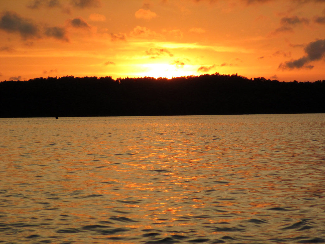 End your kayak trip at beautiful Lake Barkley.  U.S. Department of the Interior/Arthur Dunn