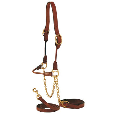 Indian Rolled Show Cattle Halter W/NoseLead Brown
